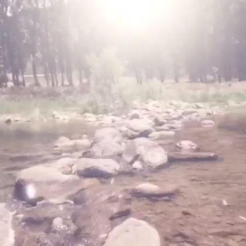 """小狮子Love的美拍 - 美拍_最火的短视频社区!"""""""