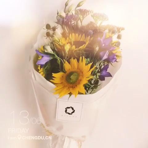 向日葵花束养成记.