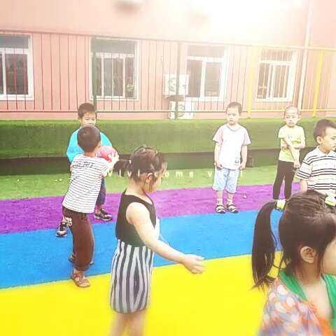 v信息游戏-小小酸黄瓜的美拍湖南信息高中技术图片