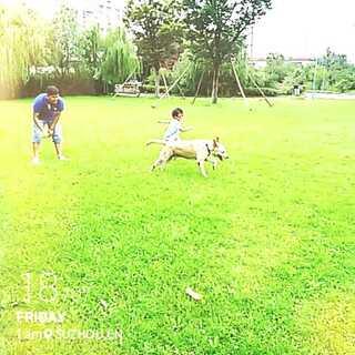 和狗狗一起赛跑!
