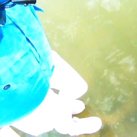 水上风景矢量图