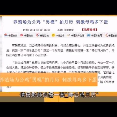 """#60秒美拍#《囧闻一箩筐》25期【养殖场为公鸡""""男模""""拍月"""