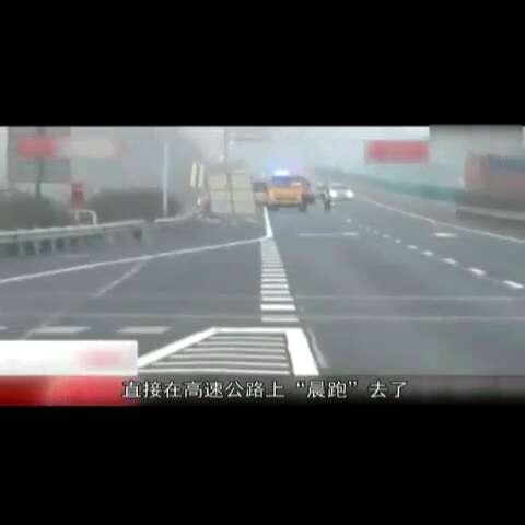 """#60秒美拍# 《囧闻一箩筐》【 鸵鸟冲进高速""""晨跑"""" 交警"""