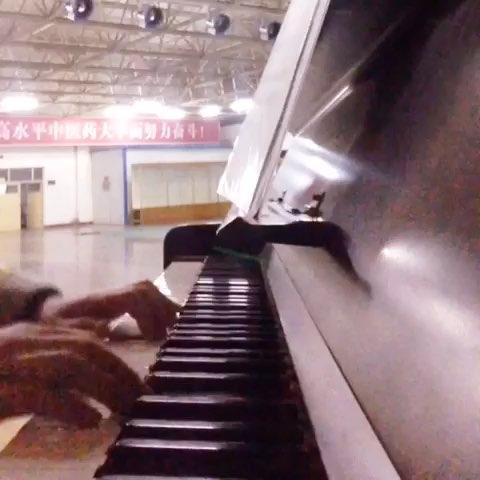 莫失莫忘钢琴简谱