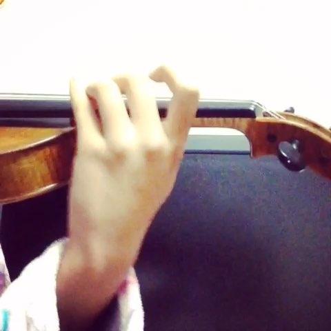 小提琴谱子鹿晗歌曲