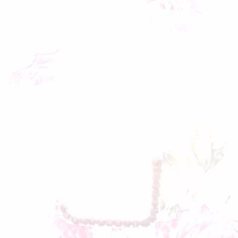 边框longmao