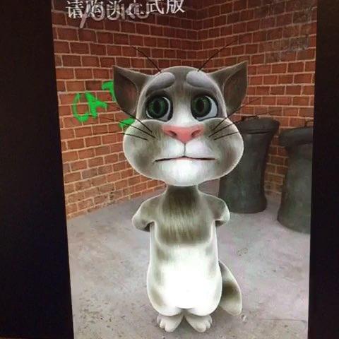 恶狗tom猫