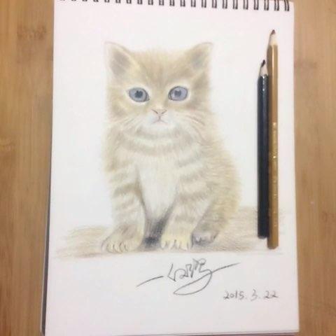 彩铅画#第一次用彩铅笔画动物,一整天画了一个04