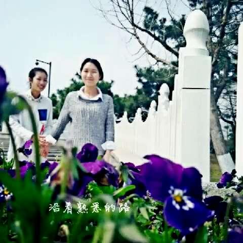 康之园 葫芦娃 大娃 新版 > 《草原美》葫芦丝曲谱  《草原美》葫芦丝