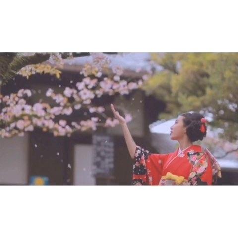 """一分钟玩日本 - 张沫凡MOMO的美拍"""""""