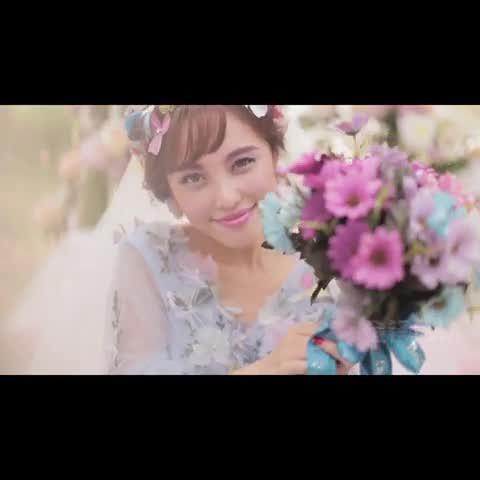 """婚礼狂想曲----仙女森系~降临 我的微信:Cjf47588 -"""""""