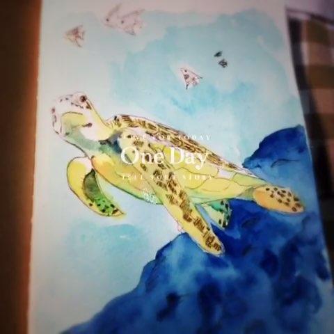 水彩手绘#海龟