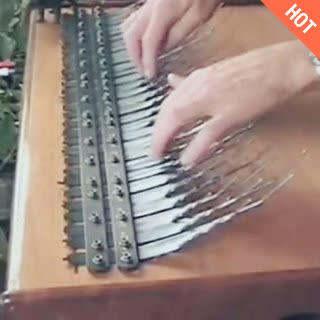 这又是什么乐器<span class=