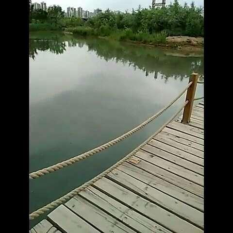 踏过长长的木板桥.