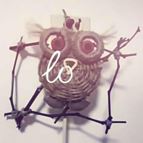 手工制作# 材料,光盘,麻绳,树枝