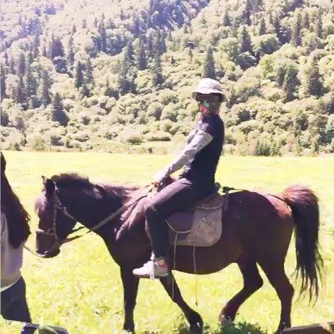 骑马塞玉势珠子女主 塞玉势后骑马女 塞玉势珠子花核喷射 塞玉势后骑马