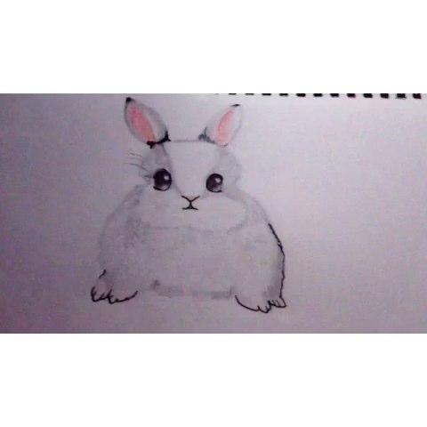 兔子设计大赛##手绘彩铅画