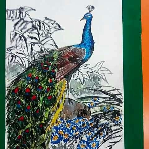 孔雀水粉画
