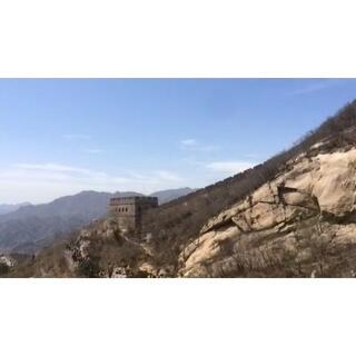 #旅行##长城#春季长城之美,杏花盛开。