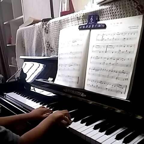 致野玫瑰钢琴简谱
