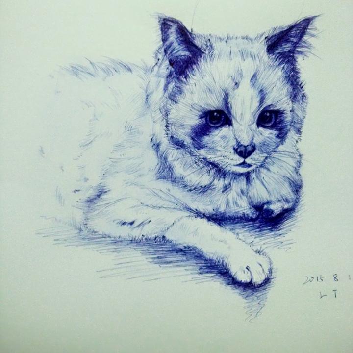 八月第一张自拍##圆珠笔手绘##我的猫咪是逗比#其实