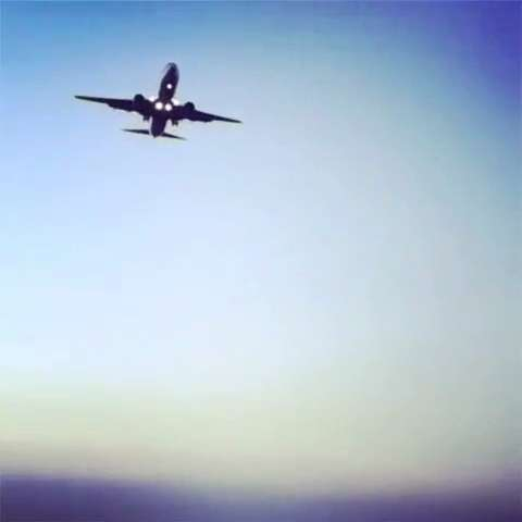 静静地看着灰机掠过头顶#看飞机