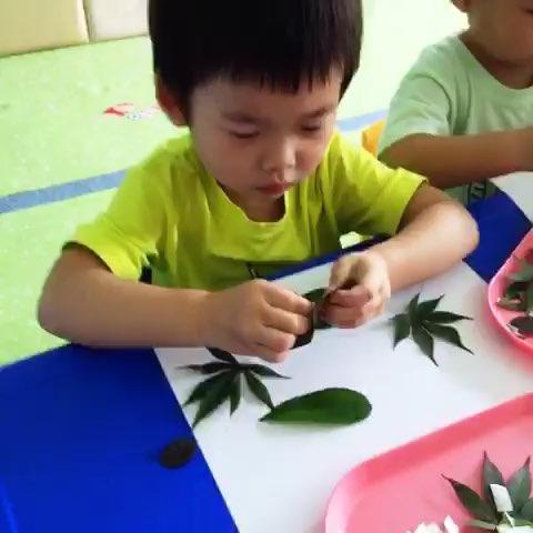 用树叶作画
