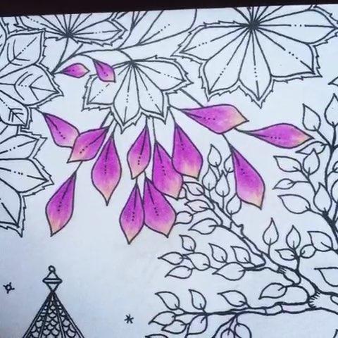 叶子教程:#秘密花园##手绘彩铅画