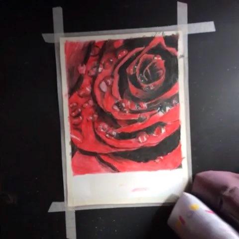 玫瑰花##玫瑰##红玫瑰##手绘##手绘彩铅画##彩铅画