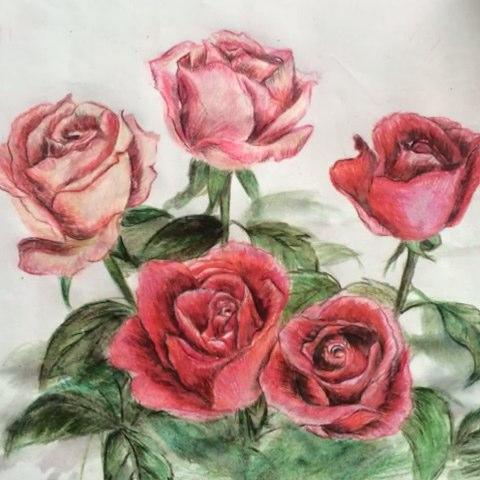 手绘彩铅画##彩铅画#最近我要练水彩了,拜拜啦,彩铅!