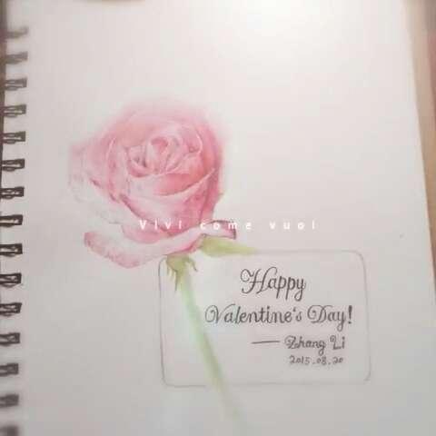 手绘彩铅画##红玫瑰