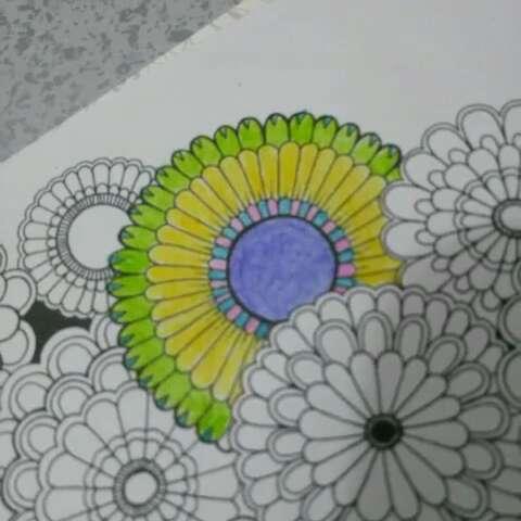 秘密花园##手绘彩铅画#画了好几个小时就画了这些,好累啊!
