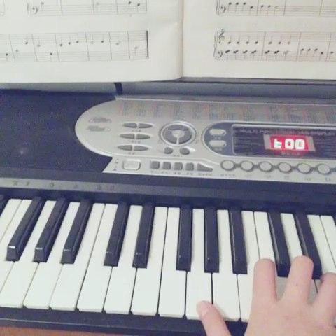原谅电子琴谱