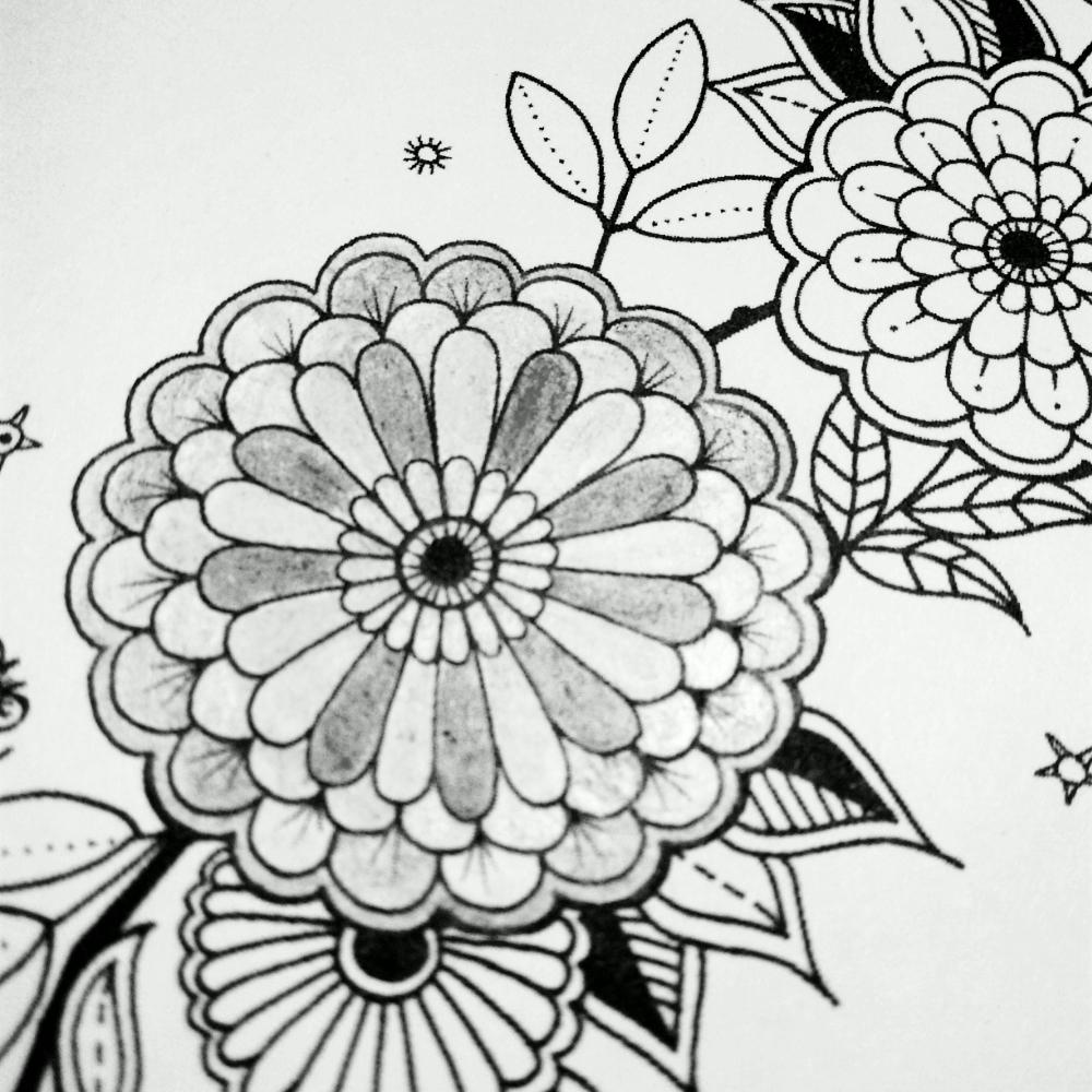 简笔画 设计 矢量 矢量图 手绘 素材 线稿 1000_1000