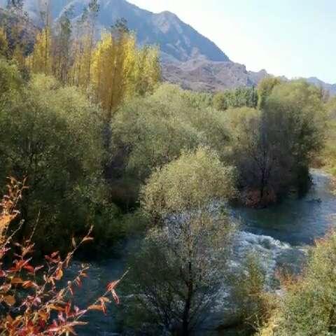 看完只想去旅行#北京延庆百里山水画廊秋天的景色太美了最好在中途住