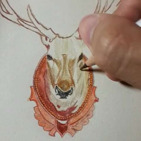 手绘鹿头过程