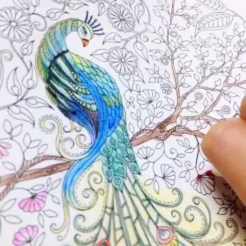 秘密花园##彩色铅笔画