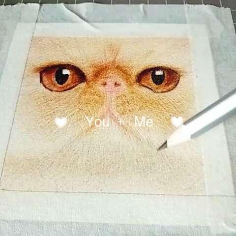 哈喽,小动物们拍照喽~原图见微博@嘎嘣豆#彩铅##手绘