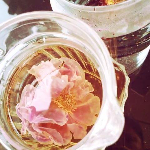 ... 都是采集用来做玫瑰精油 - Any💕💕林曼曼的美拍