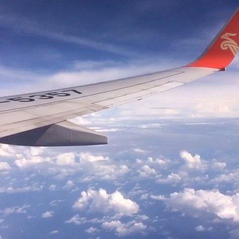 直播坐飞机# 新加坡深圳