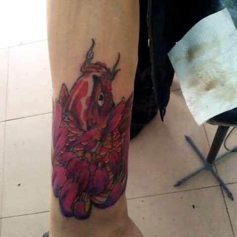 鲤鱼覆盖烟疤,完工,磐石亮子纹身,电话微信18643258431