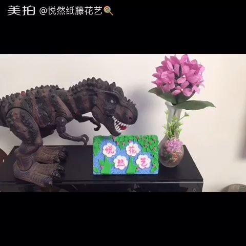 花花开小会即将推出新版蝴蝶兰教程.