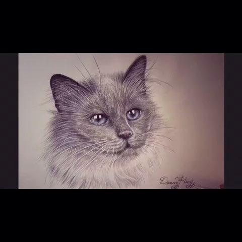 简单动物铅笔素描