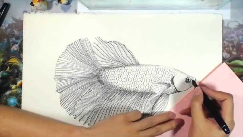 创意手绘·圆珠笔画·疯狂动物园·闪电(树懒) 影片中
