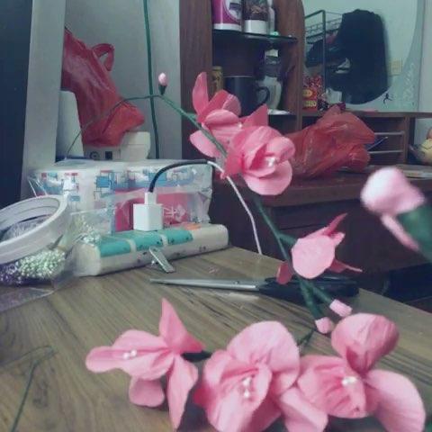 5分钟美拍##皱纹纸花##自己做的折纸花#蝴蝶兰