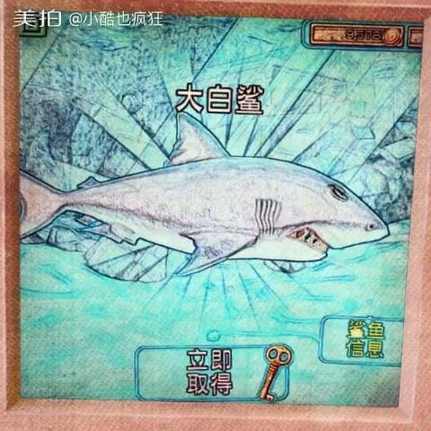 #饥饿鲨鱼进化#饥饿鲨进化与世界的对比,感觉
