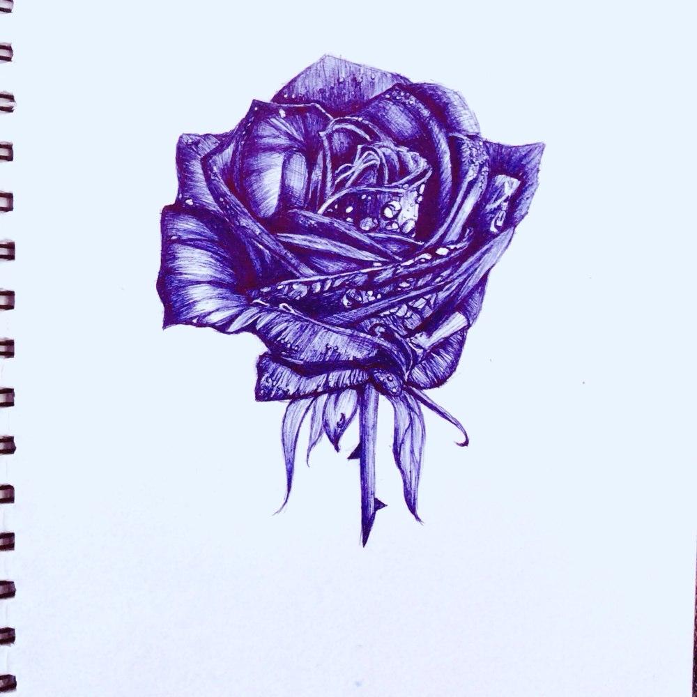 放一个之前用圆珠笔画的玫瑰