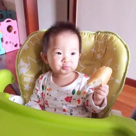 8个月宝宝自己吃面包#萌宝##可爱宝宝##宝宝