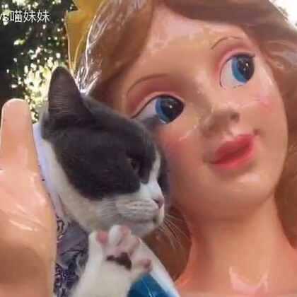 白雪公主和七个小矮人😍等等!那是什么?😎原来还有一位紫霞仙子乱入童话里😘 紫霞仙子你是来人间游历吗😁#宠物##带宠物旅行##白雪公主与七个小矮人#
