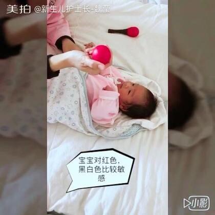 宝宝视觉听觉锻炼实际操作,感谢我们的明星宝宝配合,么么哒😘😘😘#宝宝##育儿##我要上热门##涨姿势#